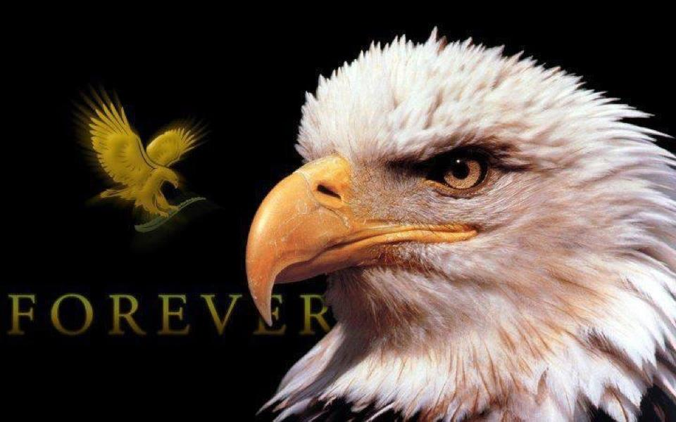Forever Living Eagle Manager